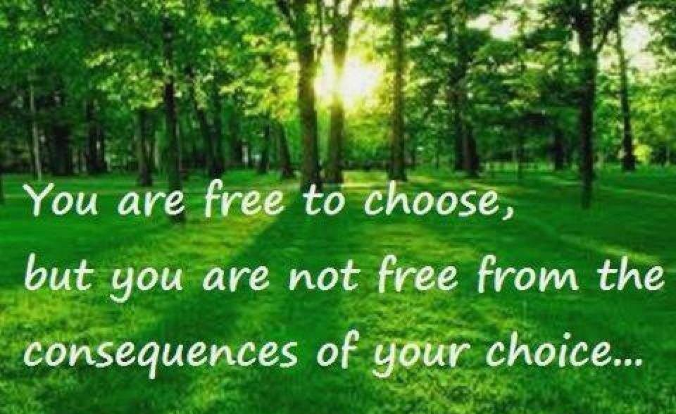 What is the meaning of Free Choice?